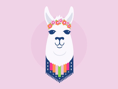 Daily Llama flat illustration llama animal