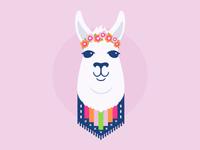 Daily Llama