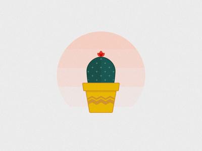 Cactus cute icon flat cactus