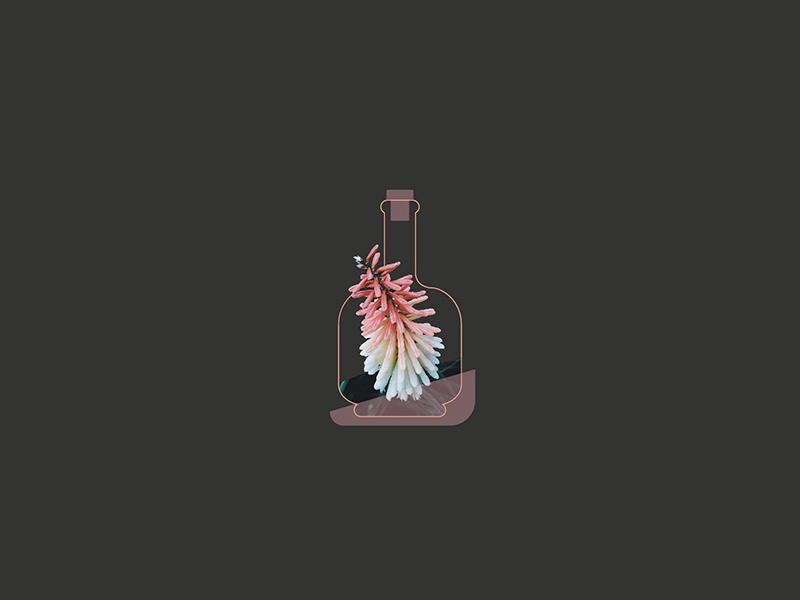 Flwrjar jar