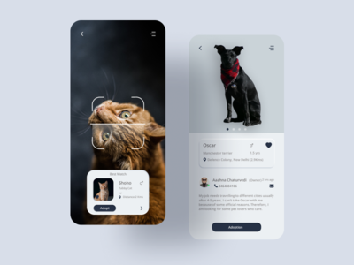 Pet Adoption App pet adoption pet app pet minimal design app