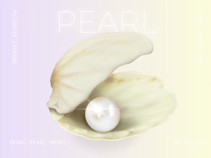 Pearl art illustration pearl