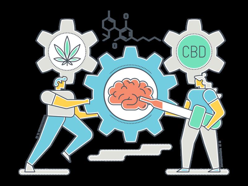 CBD Illustration 2 marijuana thc cbd vector illustration flat design