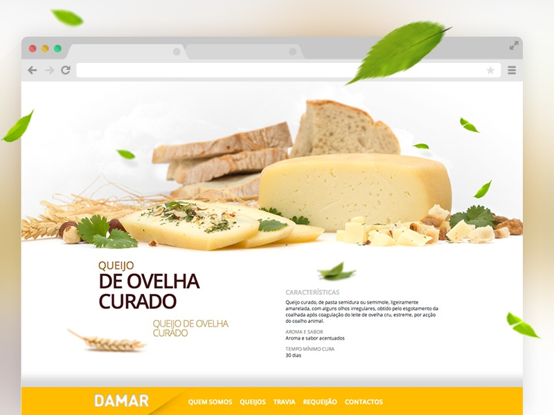 Old Work — 2010 ( Cheese Site ) cheese ui site nature food gourmet