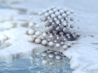 Microscopic sphere's life