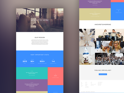 Shopspring About Page cute french bulldog rad color palette design ui