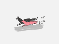 Grey Fox Red Fox