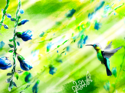 Hummingbird #2 nature art digitalpainting digitalart krita bird