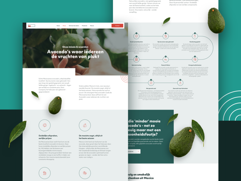 Content pages for avocados importer
