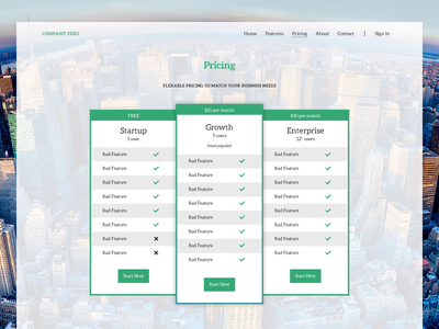 Pricing Layout ui app concept green flat design