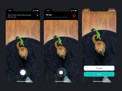 Service of the future for cat transportation cats cat iphone mobile sketch ios app design ux ui