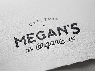 Organic food business branding project
