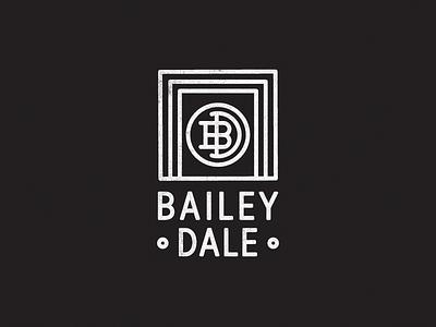 BD Logo simple line work photographer large format identity logo