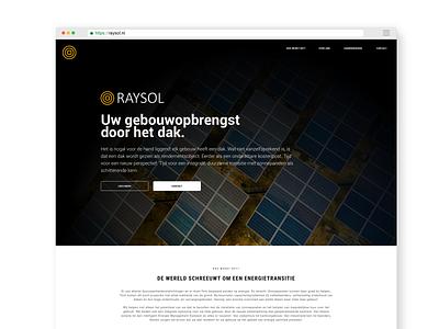 Project  raysol  - front-end front-end digital webdesign web ui branding design sketch