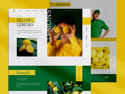 Sale of lemons site ux ui lemons landing page web design