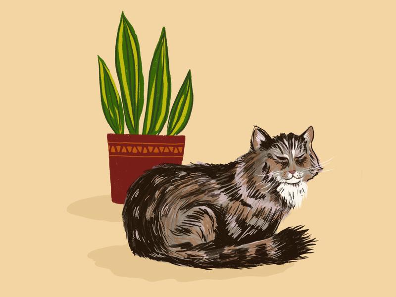 Sam the cat hand drawn art 2d plant cute cat procreate illustration