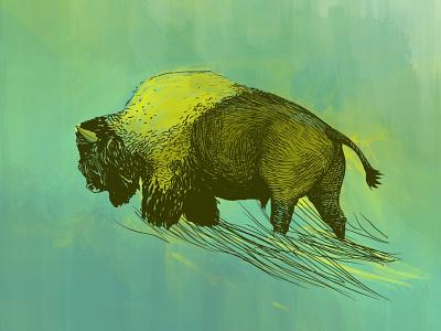 Lonely walk detailled animal walking walk lonely lineart bison procreate freelance illustrator nature digitalart illustration