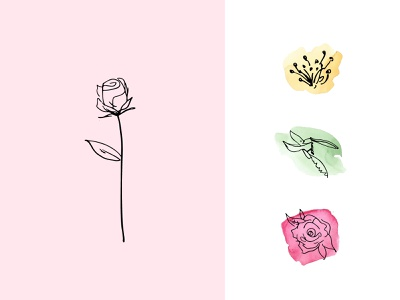 Rose Icons hand drawn line drawn watercolor rose plant leaf nature flower collection set design illustration icon vector love pink beauty grow bloom