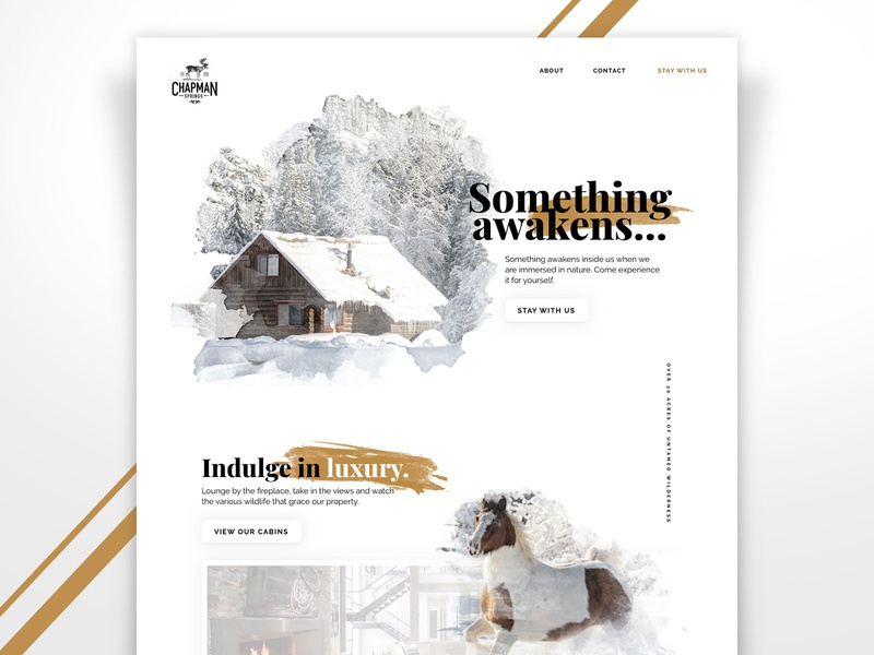 Cabin Retreat Website Design snow luxury webdesign web website design typography watercolor white clean