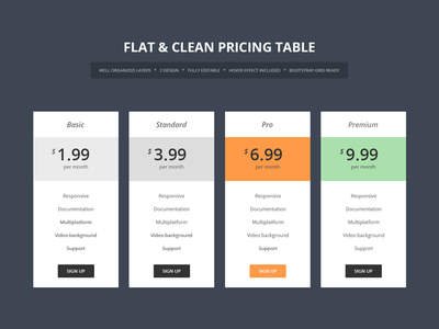 Flat & Clean Pricing Table table services psd pricing table price premium modern itsekhtiar hosting flat clean