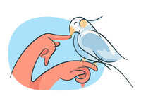 Hands n Bird illustration