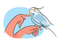 Hands n Bird illustration