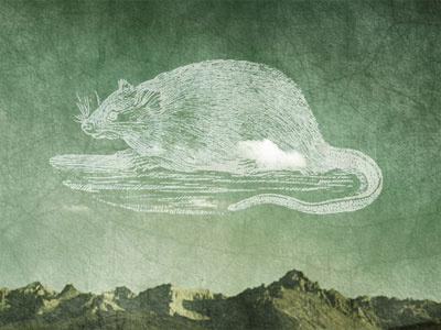 Little Secret rat personal