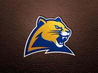 Pitt Panther 3.0 Concept : Football Mockup