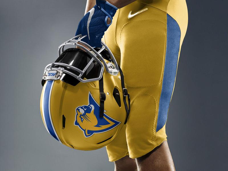 Pitt Panther 3.0 Concept : Alternate Football Helmet Mockup logo sports logo sports uniform helmet football panthers panther pittsburgh pitt