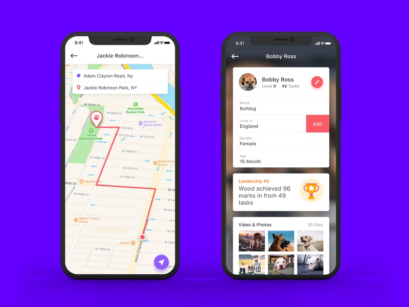 Dog training app ui ux app dog training map navigation direction award task iphone x