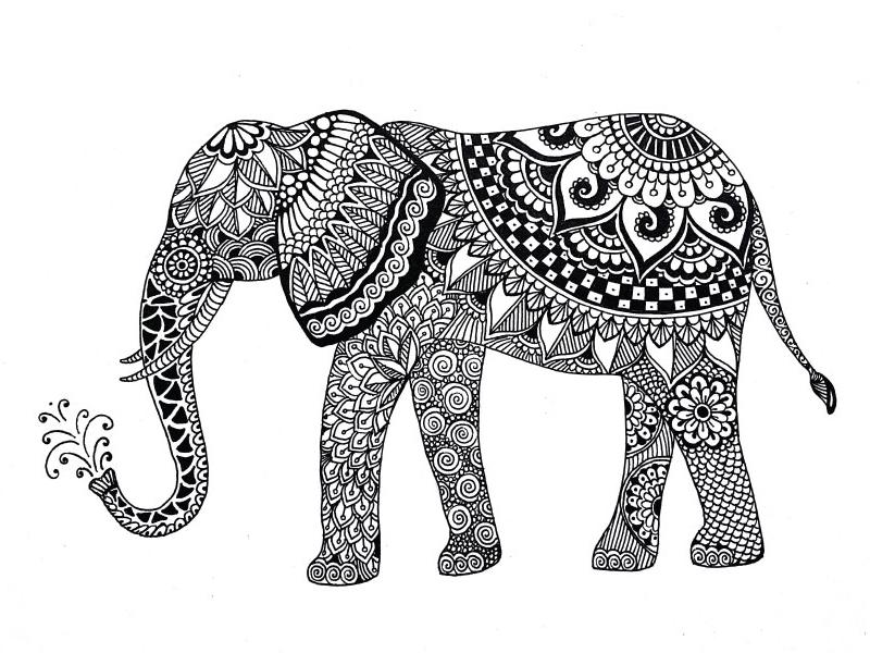 Elephant Zentangle flower floral design illustration white black animal elephant zentangle