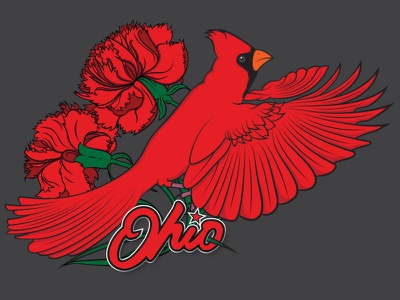 Ohio Illustration home state vector illustration red bird flowers midwest carnations cardinal ohio