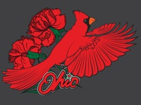 Ohio Illustration