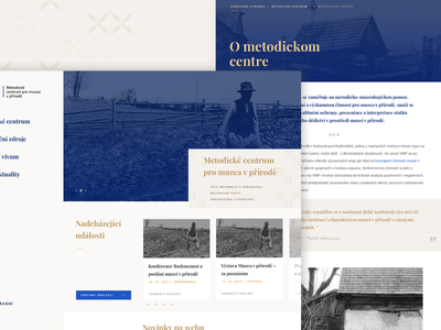 Website for Methodological Centre uiux prototype typography web design website design user experience ux ui design design user inteface ui