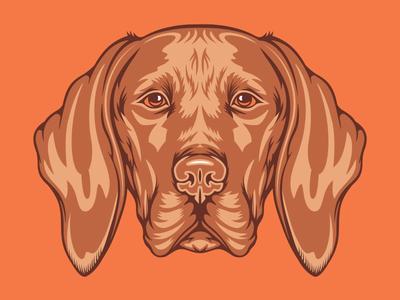 Vizsla Illustration for Golden Doodle Goods™ puppy animal lover brand artwork tee illustration vector mans best friend pet animal vizsla dog