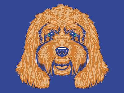 Cockapoo Illustration for Golden Doodle Goods™ puppy animal dog illustration dog lover illustration shirt design apparel golden doodle goods dog cockapoo
