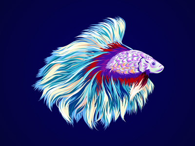 Fishy sea vector art affinity designer illustration beta fish vector