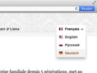 Languages switcher