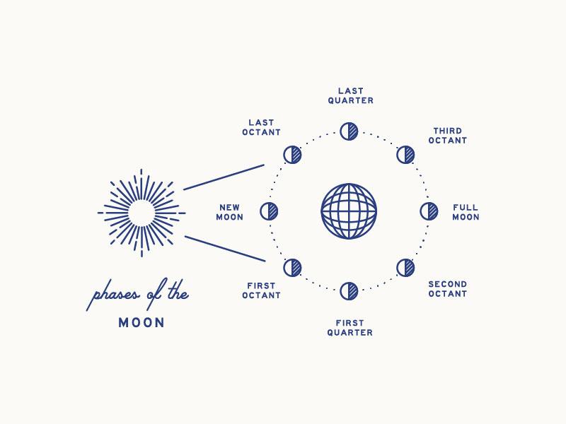 Moon Phase Diagram By Braizen Dribbble