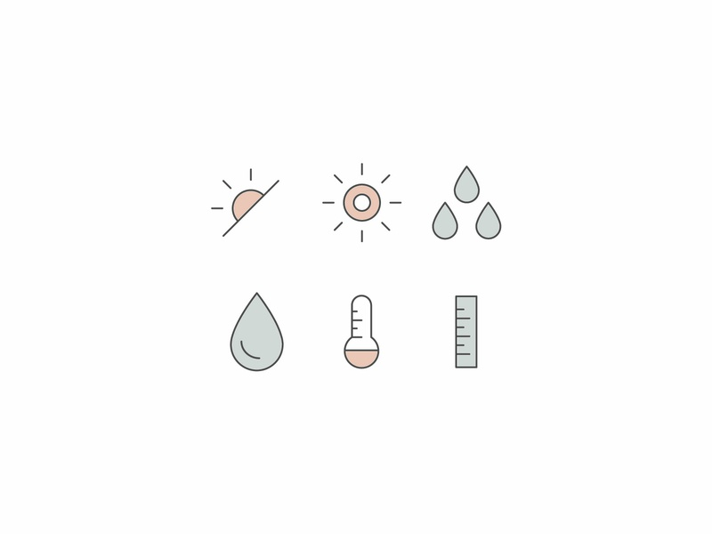 Plant Care Icons illustration branding braizen icons plants