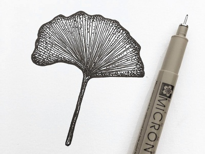 Golden Ginko leaf stipple leaf sketch shading penandink ink indianaartist indianaart indiana illustration drawing doodle