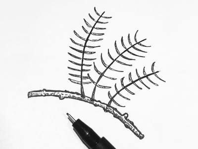 Tree branch tree stipple sketch pinetree pen nature linework ink indiana dots black