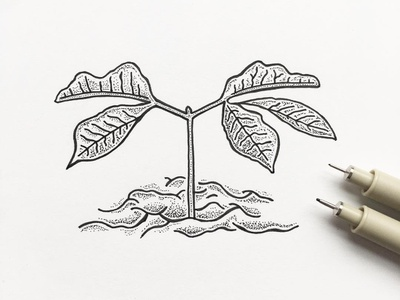 Seedling indianaart dots outdoors nature pen indianaartist ink sketch drawing penandink doodle illustration indiana stipple plant