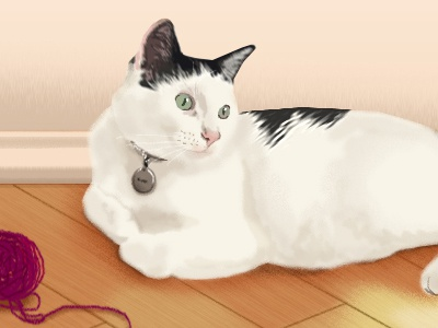 Olivia animated gif cat portrait animation illustration cat