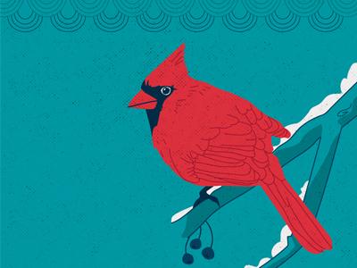 WIP Christmas wip xtmas limited palette christmas colors cardinal illustration postcards vector christmas