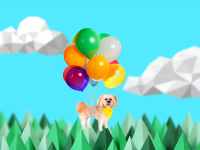 Camp Flywheel - Chewie  paper sky nature trees bright wes anderson floating balloons dog gif