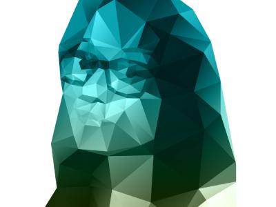 Polygon illustration prism selfie polygons