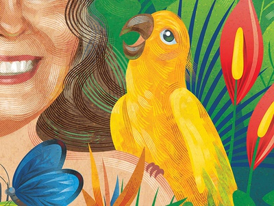 Erica tropical parrot bird
