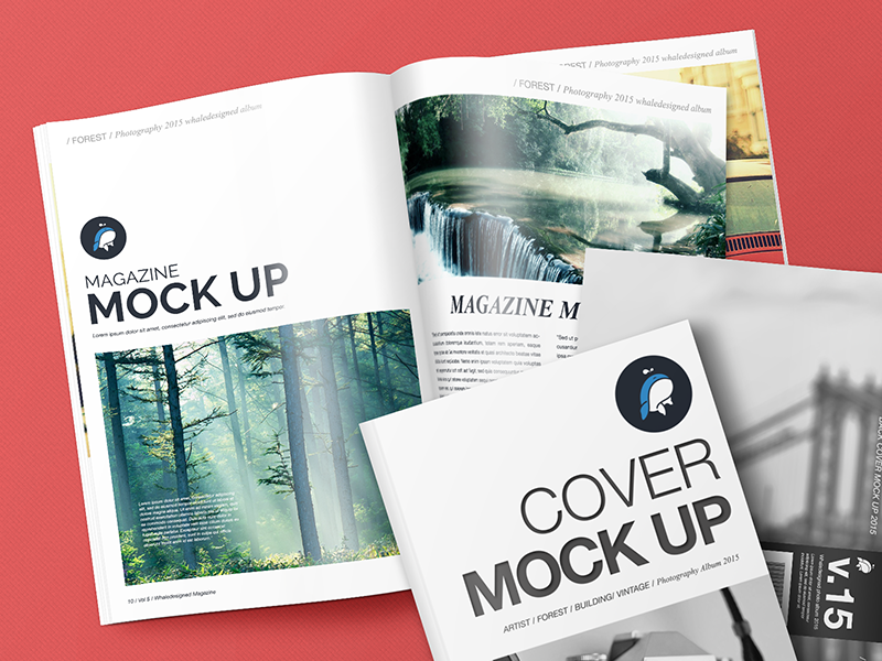 Creative Book Cover Up : Free mockup magazine with cover and back by