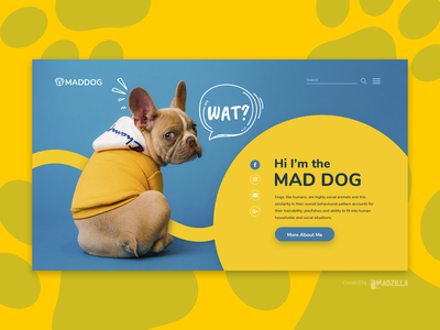 Dogs Design Inspiration website designer website design website concept ui website illustration design branding